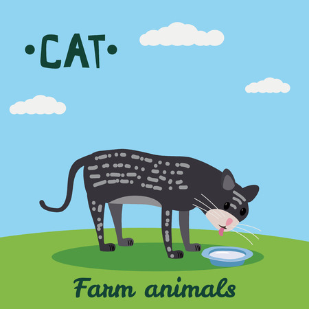 Cute Cat drink milk, farm animal character, farm animals, vector illustration on field background. Cartoon style, isolated