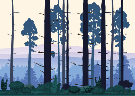 Cartoon illustration of background forest. Bright forest woods, silhouttes, trees with bushes, ferns and flowers Illustration