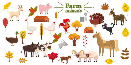 Big set of farm animals, pig, rabbit, cow, bull, cat, dog goose duck turkey donkey goat sheep ram