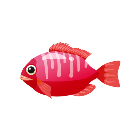 Tropical exotic coral fish, bright colorful coloring