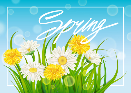 Spring daisies and dandelions background fresh green grass, pleasant juicy spring colors Illustration