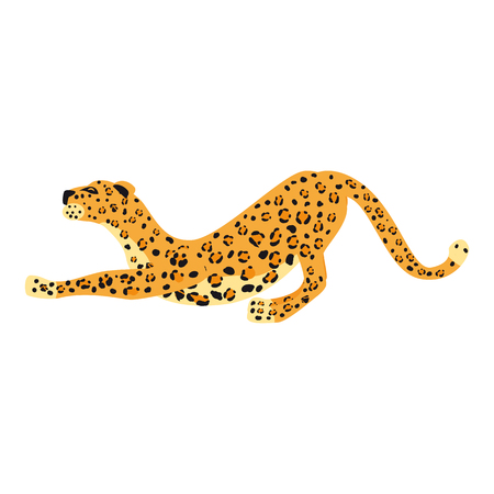 Leopard smack cute trend style, animal predator mammal, jungle. Vector illustration isolated on white background Illustration