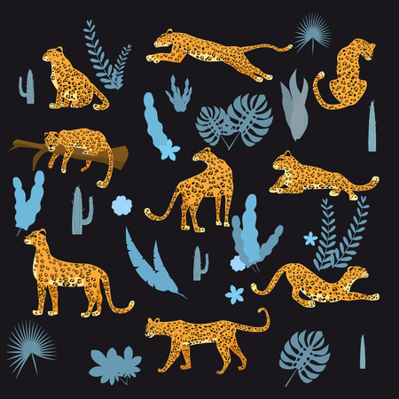 Set of leopards in various poses, plants, flowers, exotic, graphic cute trend style, mammal predator, jungle. Vector illustration of cartoon style