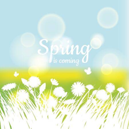 Hola primavera con hierba verde y manzanilla sobre fondo verde. Fondo de primavera. Diseño para pancartas, tarjetas de felicitación, rebajas de primavera.