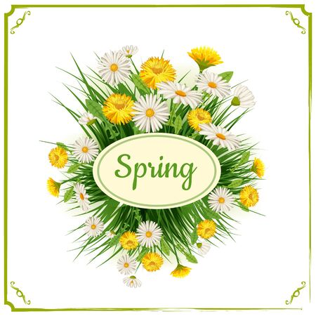 Fresh spring background with grass, dandelions and daisies. Vector, poster, template Ilustração