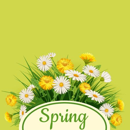 Fresh spring background with grass, dandelions and daisies. Vector, poster, template Ilustrace