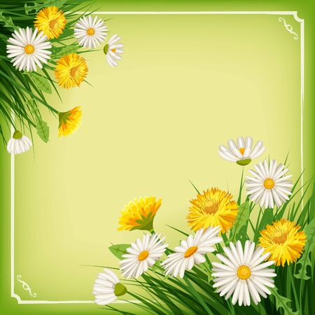 Fresh spring background with grass, dandelions and daisies. Vector, poster, template Illustration