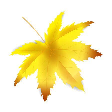 Arrière-plan du modèle de feuille d'automne bannière Vecteurs