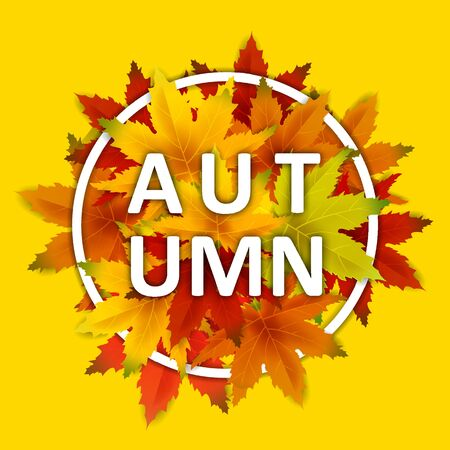 Offer Autumn Background Template, with falling bunch of leaves, shopping sale Ilustrace