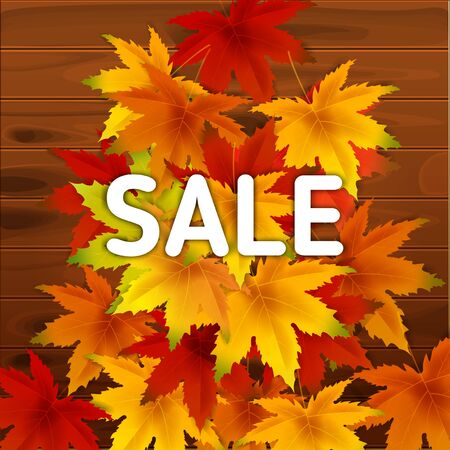 Sale Autumn Background Template, with falling bunch of leaves on wooden boards, shopping sale or seasonal poster for shopping discount promotion, Postcard and Invitation card. Vector illustration Voucher, Banner, Flyer, Promotional Poster