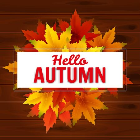 Hello Autumn Background Template, with falling bunch of leaves, shopping sale or seasonal poster for shopping discount promotion, Postcard and Invitation card. Vector illustration Voucher, Banner, Flyer, Promotional Poster