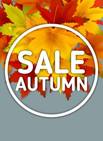 Special Offer Autumn Sale Background Template, with falling bunch of leaves, shopping sale or seasonal poster for shopping discount promotion, Postcard and Invitation card. Vector illustration Voucher, Banner, Flyer, Promotional Poster