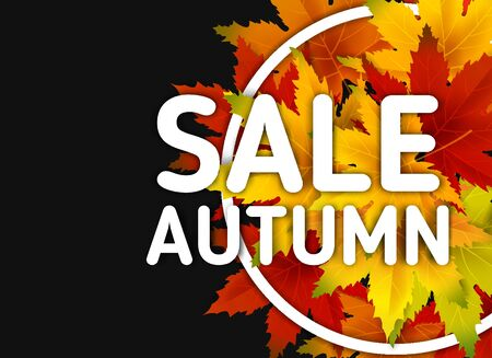 Autumn Sale Background Template, with falling bunch of leaves, shopping sale or seasonal poster 스톡 콘텐츠 - 133054406