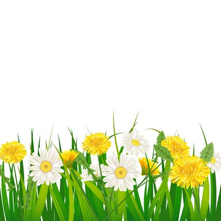 Spring template background with flowers dandelions and daisies, chamomiles, grass. Vector illustration. Fresh design for posters, flyers, greeting card, invitation Vettoriali