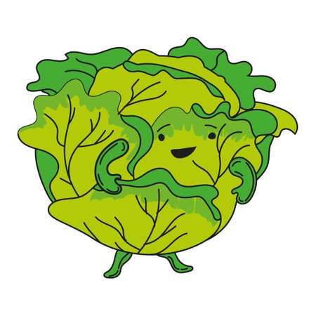 Cabbage hand dawn sketch cute character cartoon. Vector illustration