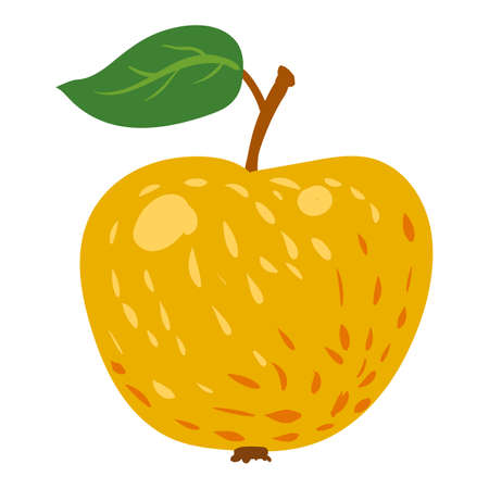 Apple yellow fruit, healthy organic nutrition product. Vector cartoon flat trendy illustration hand drawn isolated