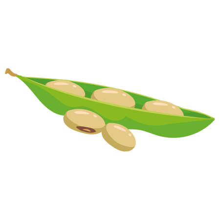 Beans soy ripe pod, healthy organic nutrition product. Vector cartoon flat trendy illustration hand drawn isolated