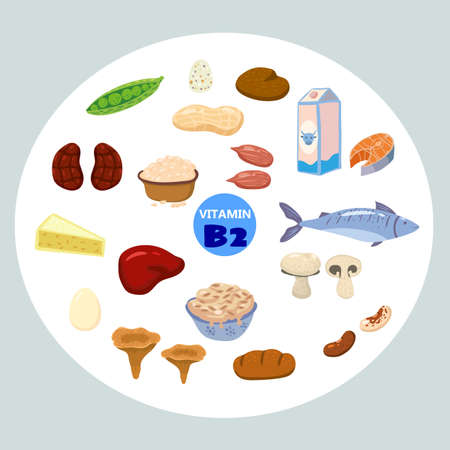 Set of Vitamin B2 origin natural sources. Healthy diary rich food containing riboflavin, cheese, mushrooms, nuts, fish. Organic diet products, natural nutrition collection. Vector flat cartoon