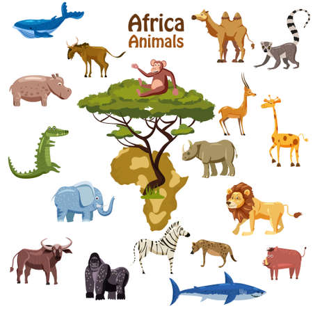Africa tropical animals map south continent. Collection cute exotic characters. Vector illustration isolated