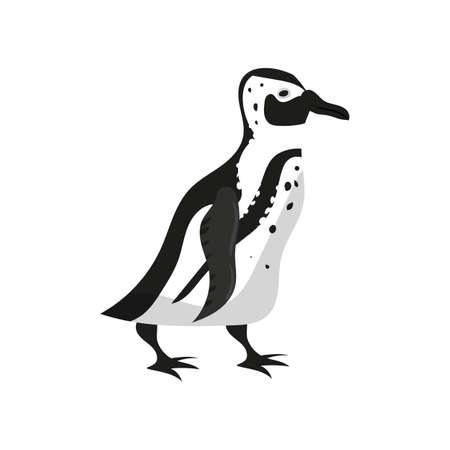 Penguin bird black white color. Vector illustration cartoon style