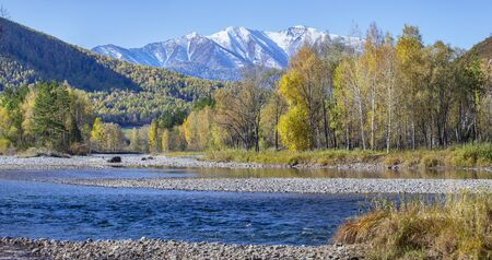 Beautiful autumn view. Blue river, yellow forest and snow-capped mountains. Altai, Siberia, travels in Russia. 写真素材