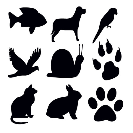 tracks live: Silhouettes animal on white background