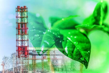 Production pipes on the background of leaves of a green plant. Concept of environmental protection.