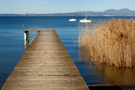 Jetty on a lake with reed bed photo
