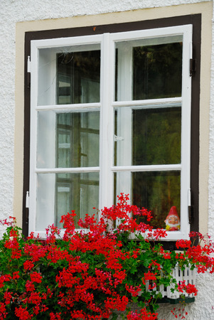 Windows with red flower and a gnome who looks through photo