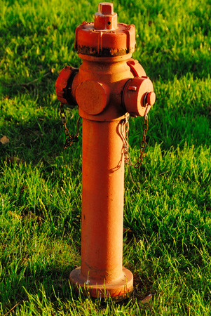 red hydrant photo
