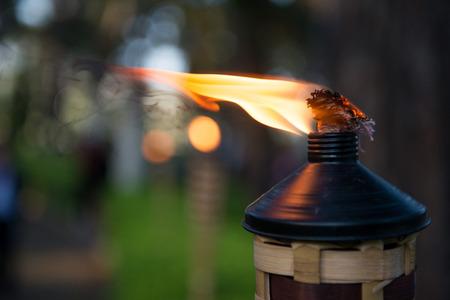 Bamboo Garden Torches Photo