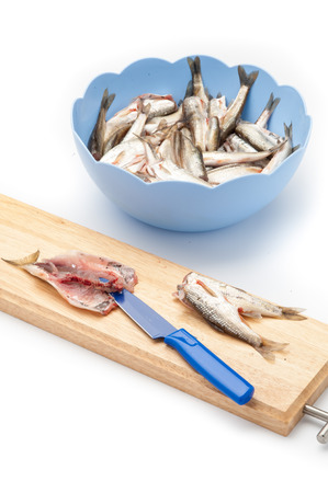 blue fish: Raw fish in a blue bowl Stock Photo