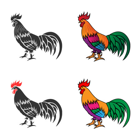rooster: Monochrome silhouette and colorful vector illustration of the cock.