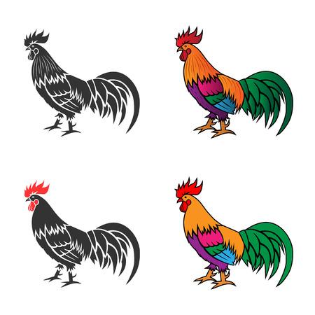 gallo: Silueta monocromo y la ilustraci�n vectorial colorido de la polla.