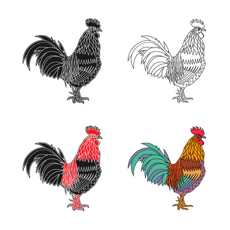 Monochrome silhouette and colorful vector illustration of the cock.