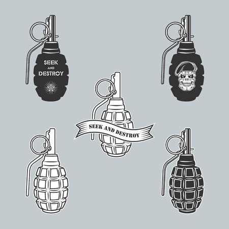 military beret: Military vector emblem with  grenade and skull.