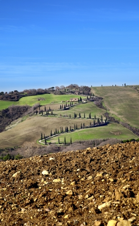 orcia: val d orcia road cypress Stock Photo