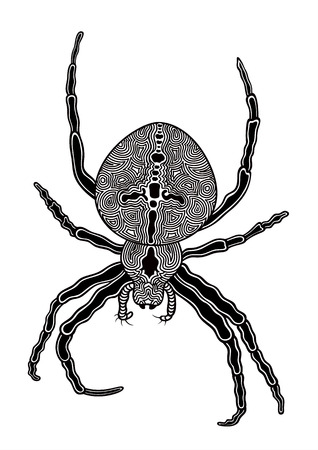 Vector illustration of abstract stylized spider on white background Vector
