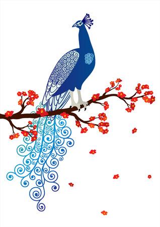 pavo real: Ilustraci�n del vector del pavo real abstracto azul sobre la rama de un �rbol en flor roja sobre fondo blanco