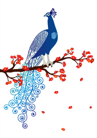 Vector illustration of blue abstract peacock on the red blossom tree branch on white background Vector