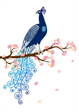 Vector illustration of blue abstract peacock on the pink blossom tree branch on white background
