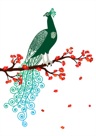 Vector illustration of green abstract peacock on the red blossom tree branch on white background Vector