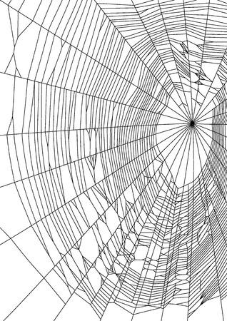 Vector illustratie van spider web of spinneweb op witte achtergrond