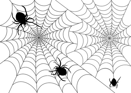 The vector illustration of web and spiders