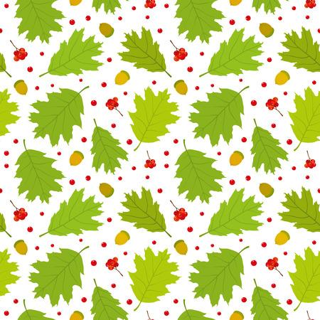 Seamless pattern of Canadian oak39s leaves acorns and rowan berries. Vector