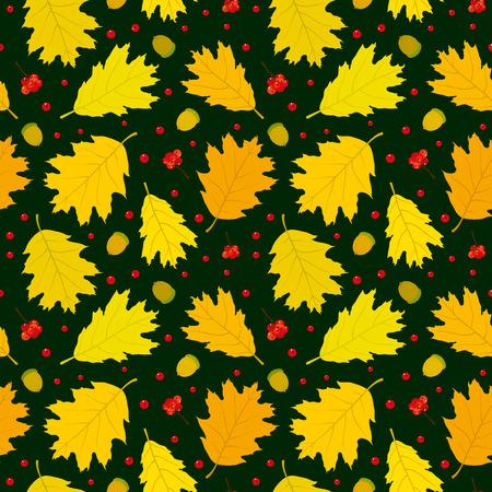 Autumn seamless pattern of Canadian oak39s leaves acorns and rowan berries. Dark green background. Vector