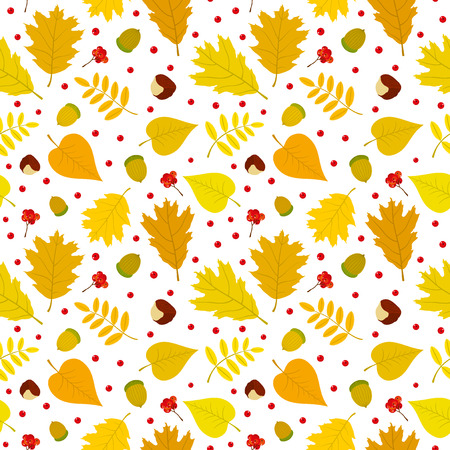 Autumn seamless pattern with rowan berries leaves acorn chestnut. Vector set. White background. Vector
