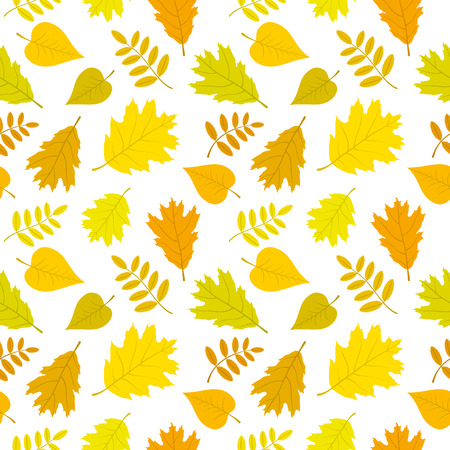Autumn forest seamless pattern with oak rowan lilac leaves. Vector set. White background. Vector