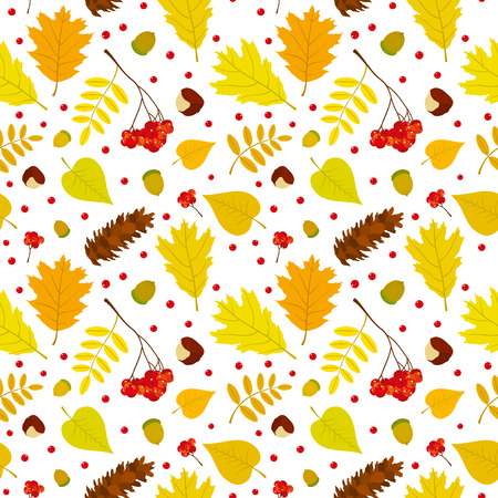 Autumn forest seamless pattern with rowan berries leaves acorn chestnut pine cone. Vector set. White background. Vector