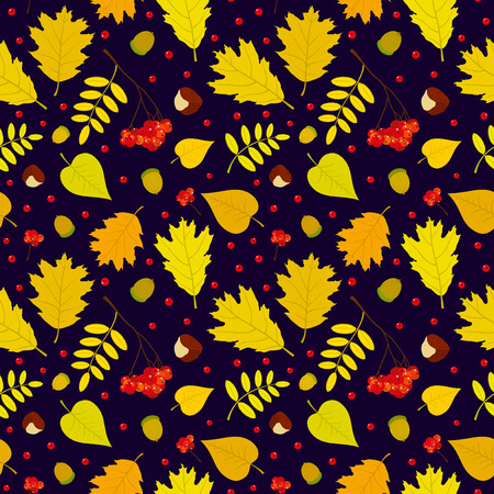 Autumn forest seamless pattern with rowan berries leaves acorn chestnut. Vector set. Dark blue background. Vector